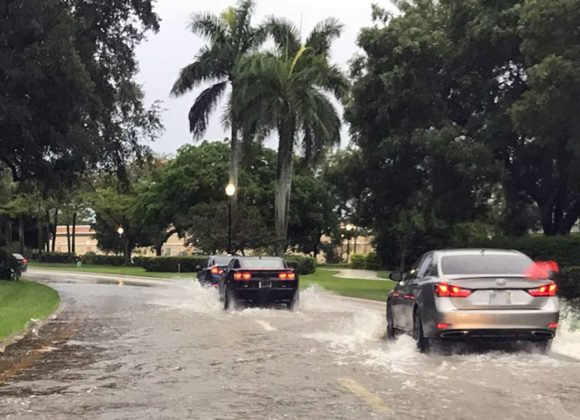 Flood Auto Insurance Protection in Florida